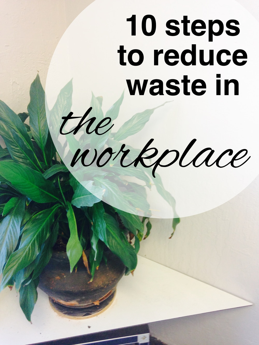 10 Steps to Reduce your Waste in the Workplace