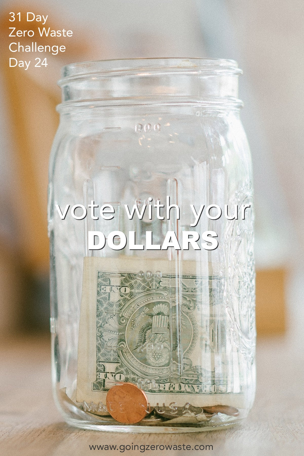 Vote With Your Dollars - Day 24 of the Zero Waste Challenge
