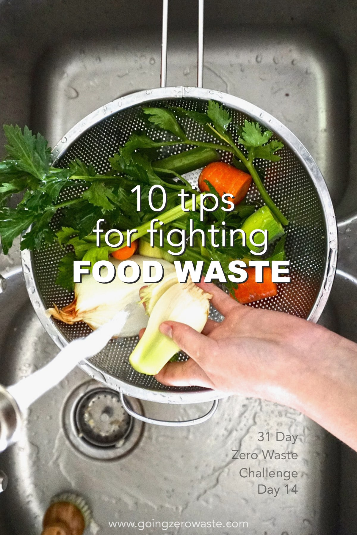 10 Tips for Fighting Food Waste - Day 14 of the Zero Waste Challenge