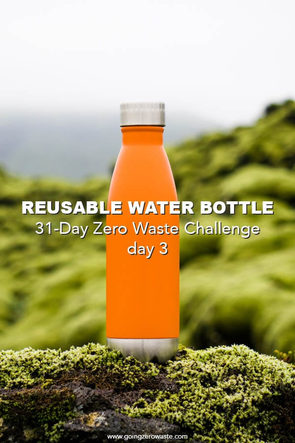 Bring a Reusable Water Bottle - Day 3 of the Zero Waste Challenge