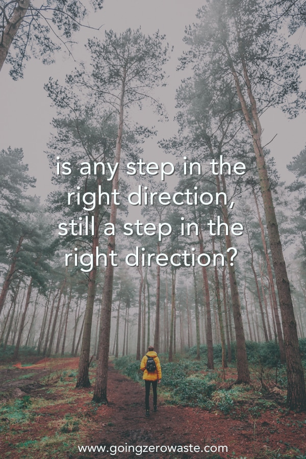Is any step in the right direction, really a step in the right direction?