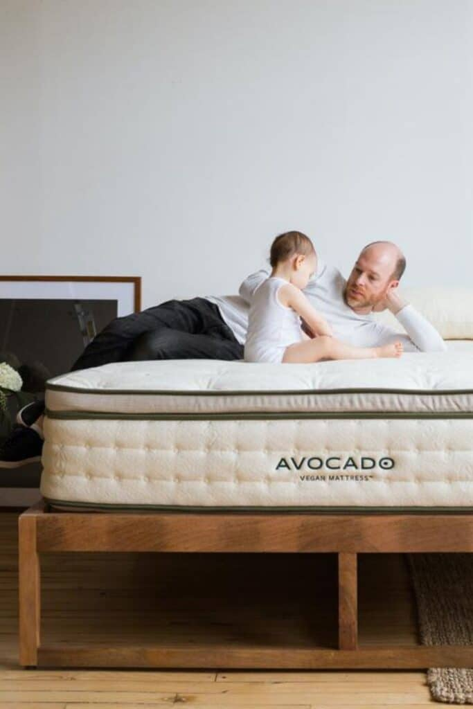 all natural, sustainable and organic mattresses for any eco friendly home.  Avocado mattress - the futon shop