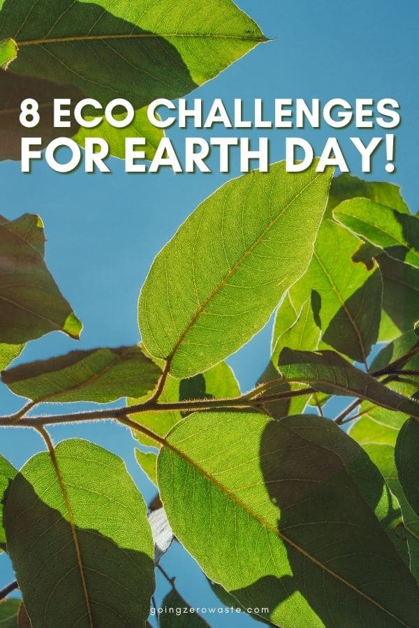 8 Eco Challenges for Earth Day