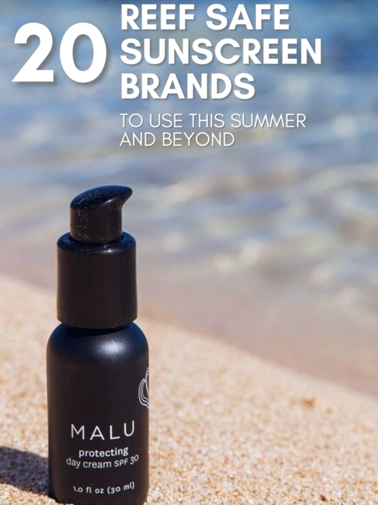 20 Reef Safe Sunscreen Brands To Use This Summer and Beyond