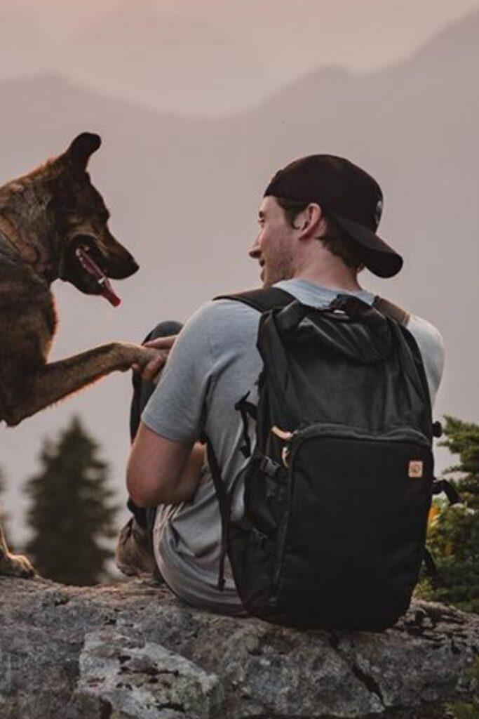 Tentree: 12 Eco Friendly Backpacks for School + Beyond